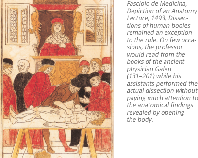 The History of Anatomy - from the beginnings to the 20th century