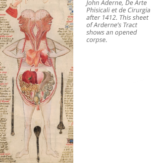 the history of anatomy from the beginnings to the 20th century