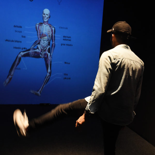 Anatomie-Spiegel