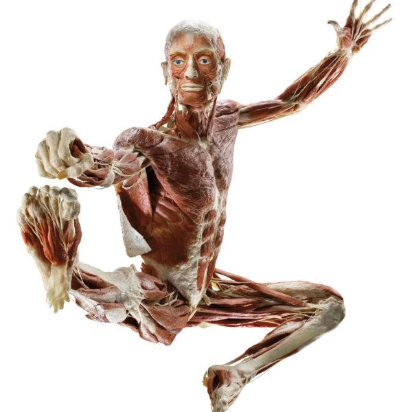 Der springende Tänzer