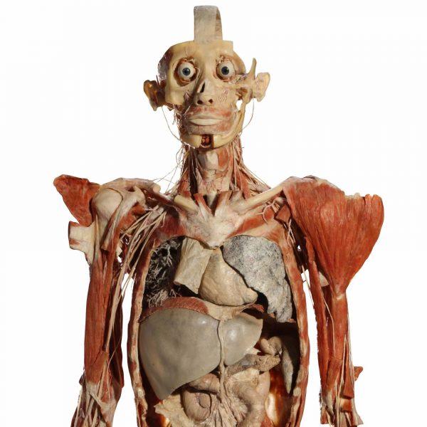 Body III